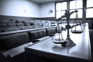 services-litigation